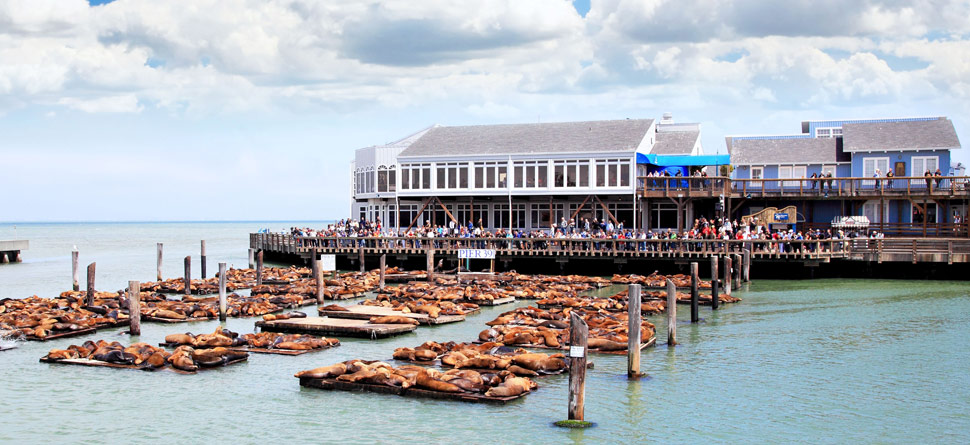 hero_fishermans_wharf_hotels_home5