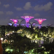 1 singapore - gardens by the bay (4)