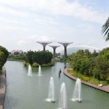 1 singapore - gardens by the bay (7)